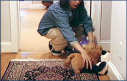 Graphic showing a woman picking up toys from the floor