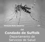 Mosquito Brochure Graphic