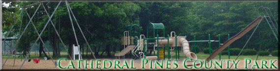 Picture of a children's playground area at Cathedral Pines County Park