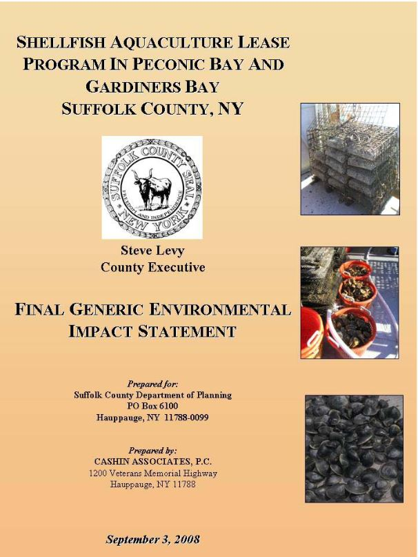 Final Generic Environmental Impact Statement cover