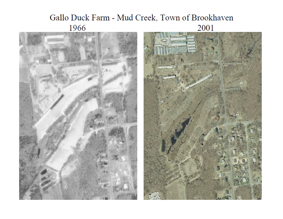 Aerial photos of Gallo Duck Farm, left image is from 1966, right image is from 2001