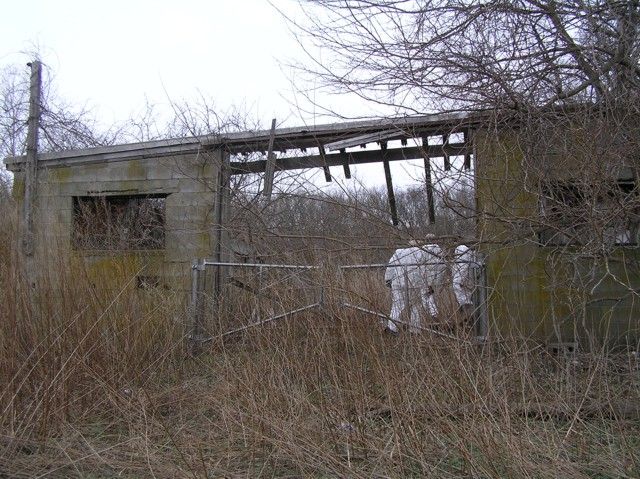image 1 - abandoned house with 3 workers entering