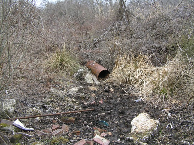 image 16 - an open metal drainage pipe on the forest floor