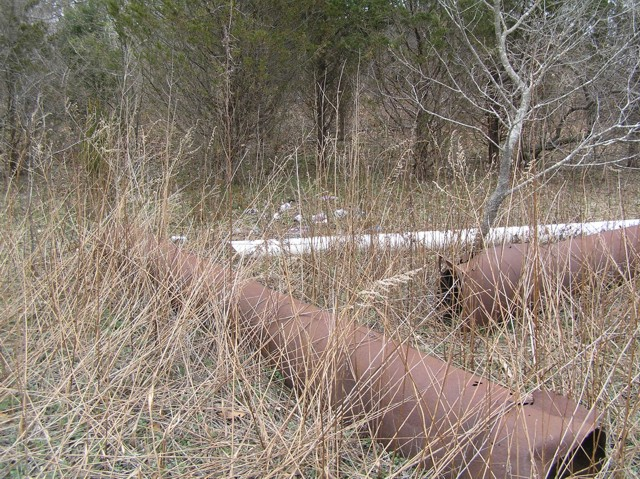 image 36a - large rusting metal pipes on the ground in a forest clearing, reeds and grass are grown over