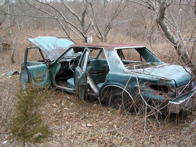 image 37 - an abandoned rusting stripped blue car from the 70's in a forst clearing