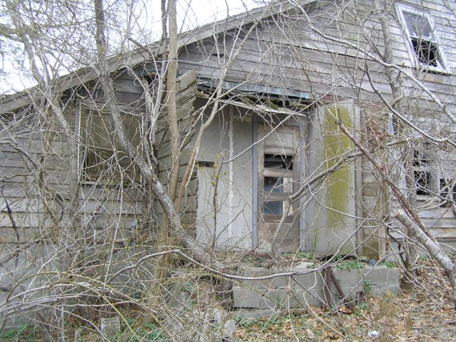 image 39 - an old abandoned house with broken windows and dead tress growning over it