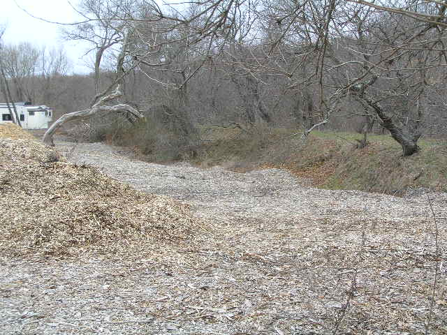 image 41 - a dirt path covered with dead leaves leads to an abandoned white building in the background
