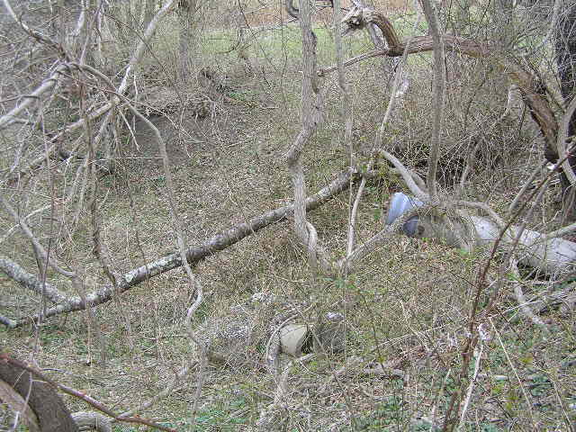 image 42a - a metal pipe stick up from the ground surrounded by dead trees and broken tree trunks