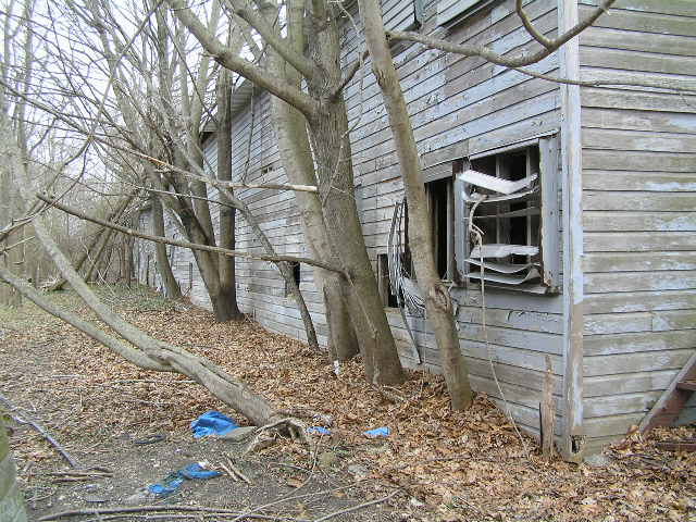 image 47a - an abandoned house, trees grow up against it. windows are broken and boards are rotted