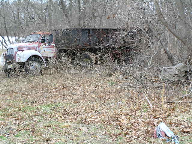 image 47c - an old dump truck sits in the woods