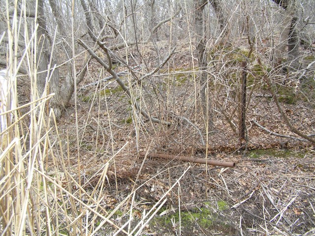 image 7 - a downed metal fence in the middle of the woods