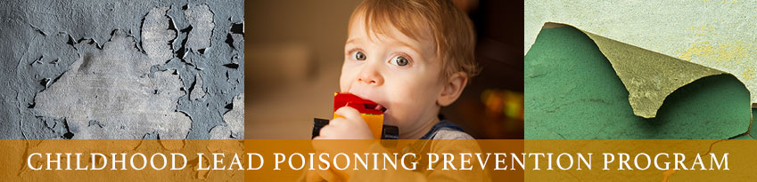Lead Poisoning Prevention Program Banner